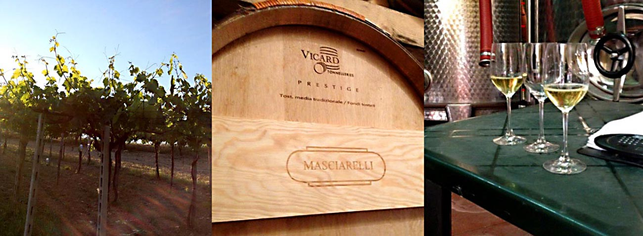 Abruzzo, Italy (Part I of IV) – A Private Tour of Masciarelli Winery
