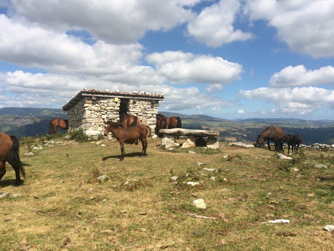 The Horse Club of The Dolmen de Merilles in Asturias