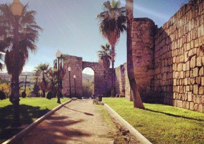 Merida_wall_view